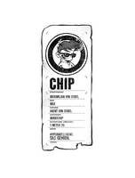 Steckbrief Chip